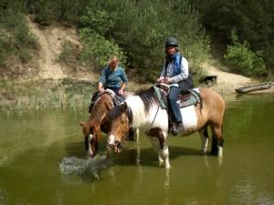 Beim Ausritt im Teich