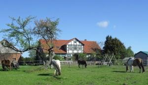 pferdevormhaus